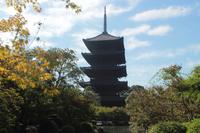 京都 東寺 五重塔