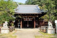京都 新熊野神社 本殿
