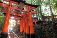 京都 伏見稲荷大社 参道の風景