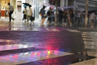 雨の日の横断歩道