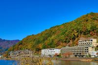 河口湖から見た紅葉風景
