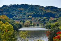 淡路島公園と紅葉風景