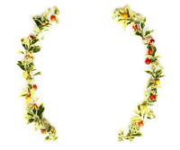ヒイラギの葉とクマタケランの実とツルソバの花のクリスマスの飾り