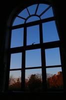 窓から見える夕闇の光景
