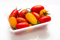 ミニトマト 品種はアイコ