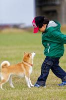 柴犬と遊ぶ男の子