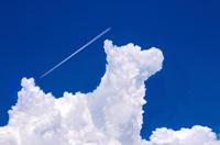 青空と犬の形の入道雲