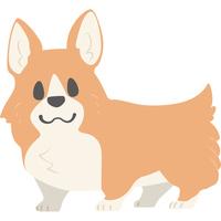 カメラ目線の犬(コーギー)