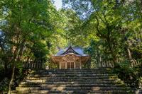 平泉寺白山神社の風景