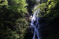 新緑と丸神の滝
