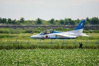 滑走路を移動するブルーインパルスT-4