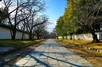 醍醐寺の仁王門前