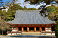 醍醐寺:金堂(国宝)