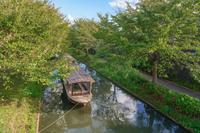 伏見十石舟と伏見濠川の風景