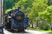真夏の青梅鉄道公園