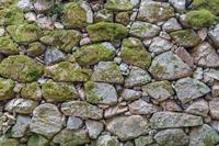 背景素材 苔むす石垣