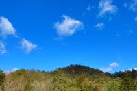 冬の青空と自然の風景