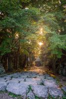 安土城跡 城跡に注ぐ夕日