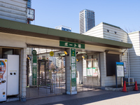 上野 不忍池