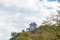 犬山城秋景色