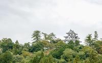 郡上八幡城の風景