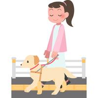 盲導犬と歩く女性