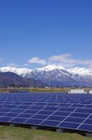 太陽光発電(メガソーラー発電)