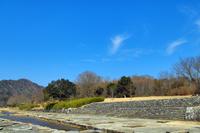 青い空と自然公園