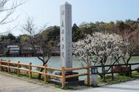 京都 長岡天満宮 八条が池