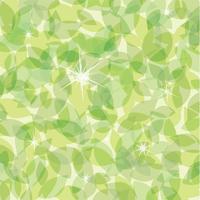 新緑 グリーンの背景素材