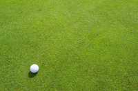 ゴルフ ボール