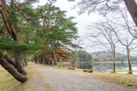 南湖公園 湖畔の秋景色
