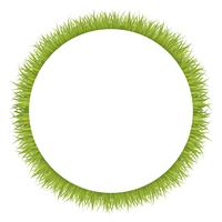 草のフレーム素材