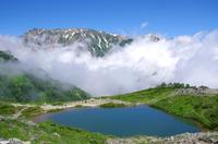 夏の八方池
