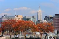 マンハッタン 秋のエンパイアステートビル