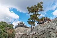 松山城 太鼓櫓と筒井門西続櫓