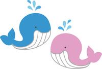 かわいいクジラのイラスト素材