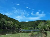 新緑の段戸湖