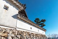 高知城 白壁の城壁