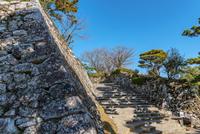 高知城 石垣と石段