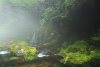 夏の元滝伏流水