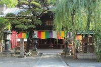 京都 六角堂(頂法寺)