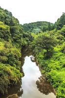 夏の養老渓谷の宝衛橋からみた風景