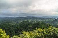 夏の大福山展望台からみた風景