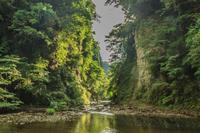 夏の養老渓谷の弘文洞跡の風景