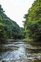 夏の養老渓谷の風景