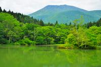 御鹿池と黒姫山