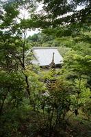 飛鳥路の風景 岡寺