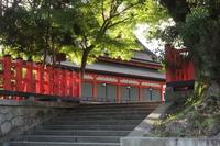 京都 八坂神社 境内の風景