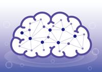 脳内ネットワーク(平面)